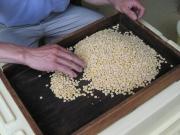 大豆選びからこだわっています。